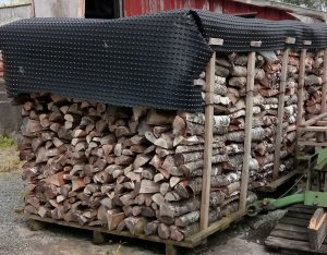 Stack of cut logs drying under tarpaulin